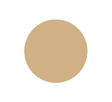 generalcasa-persiane-colori-ral1001