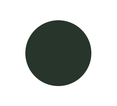 generalcasa-persiane-colori-ral6009