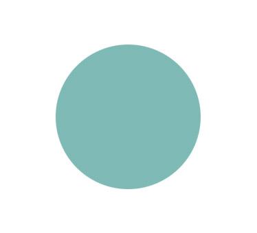 generalcasa-persiane-colori-ral6027